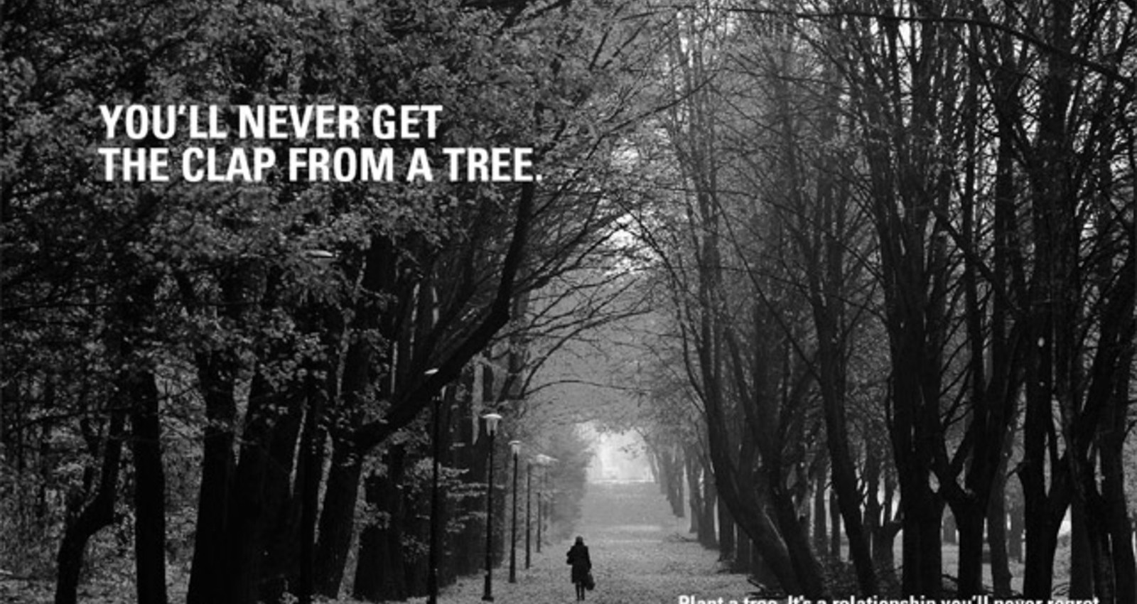Get involved with a tree