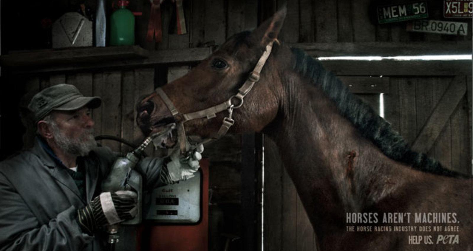 horses aren't machines