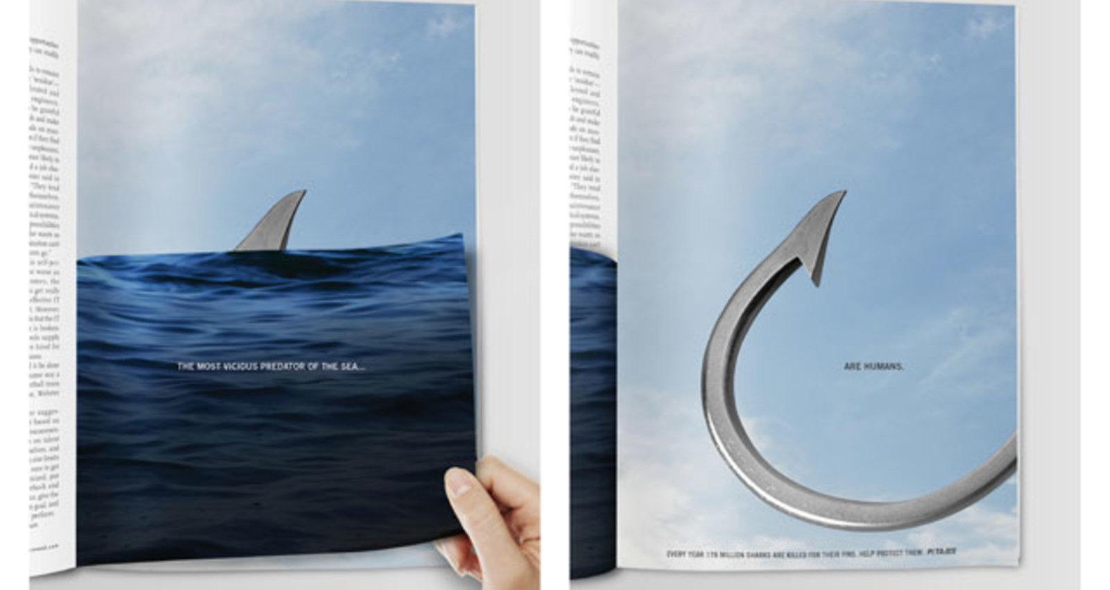 Shark Hook