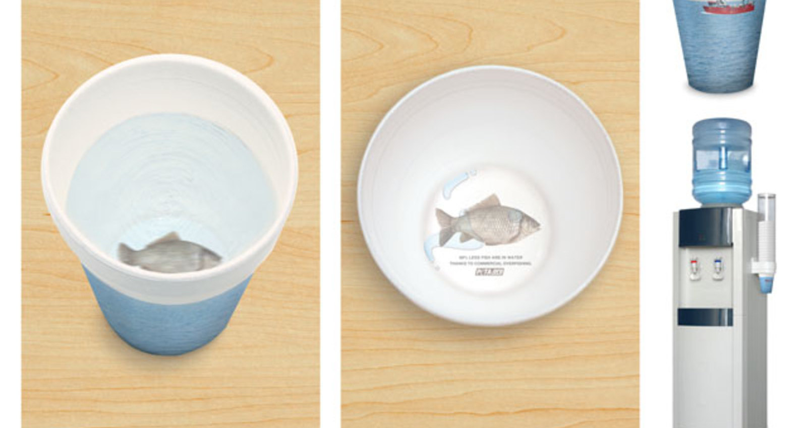 Fish Cup