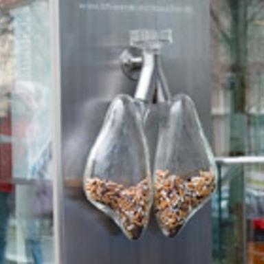 smoker's lung