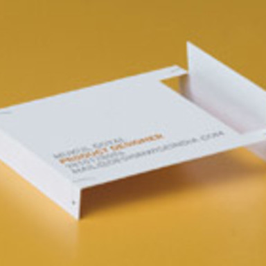 Foldout Business Cards