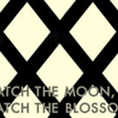 CATCH THE MOON,CATCH THE BLOSSOM.