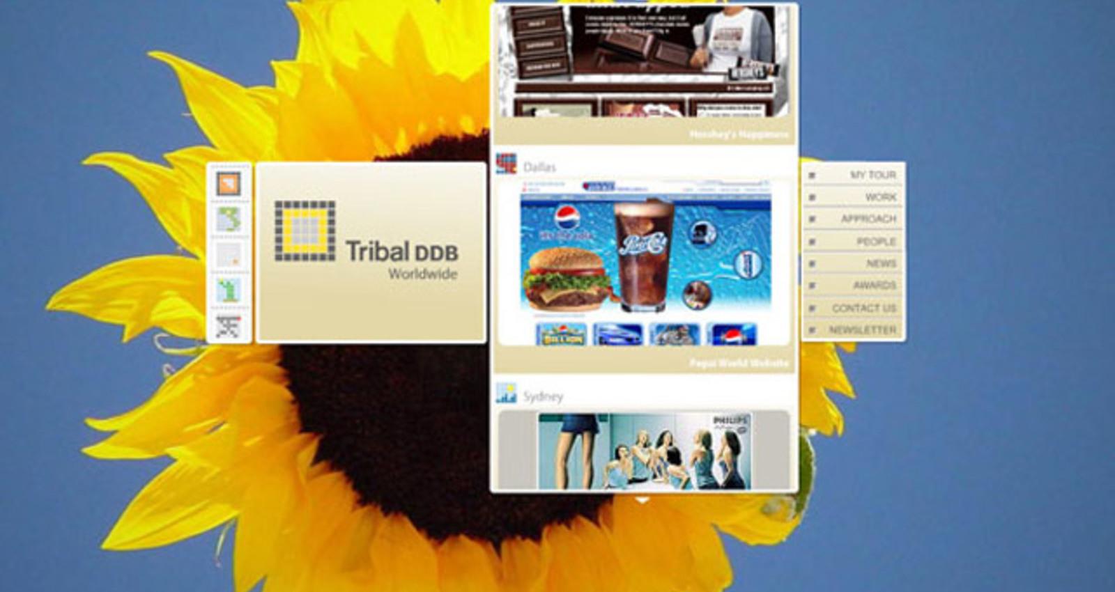 Tribal DDB Worldwide Web Site