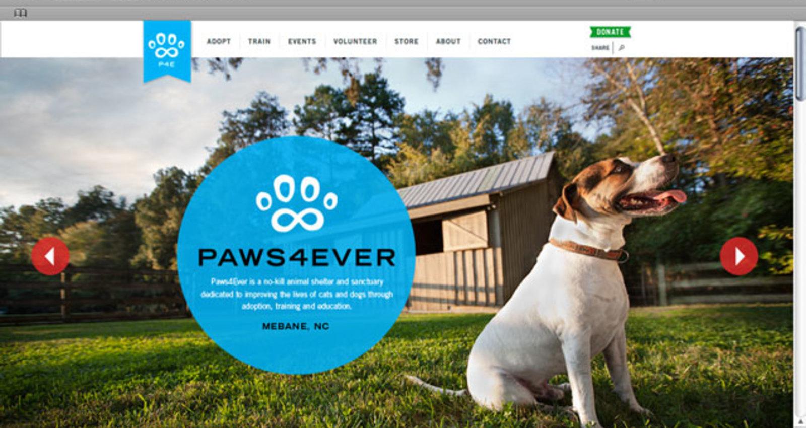 Paws4Ever website